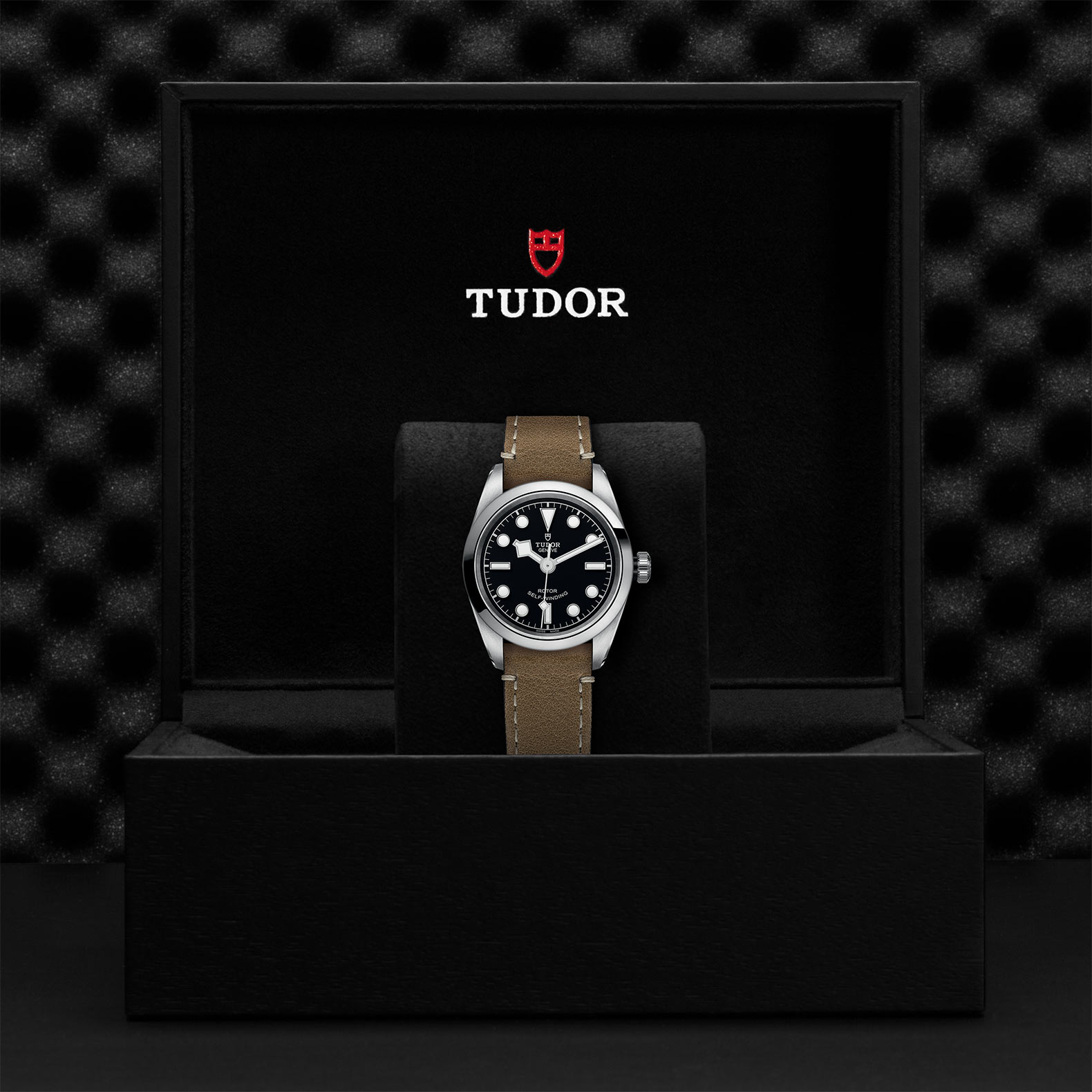 TUDOR Black Bay 32 M79580 0002 Presentation