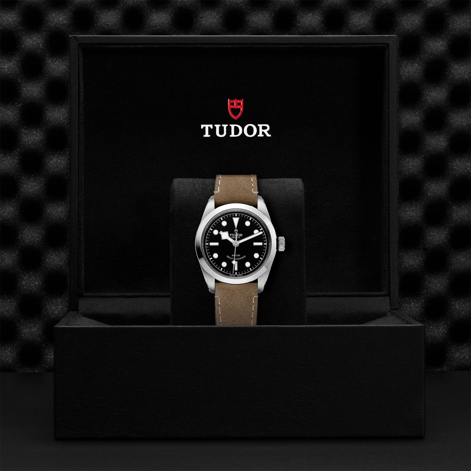 TUDOR Black Bay 36 M79500 0008 Presentation