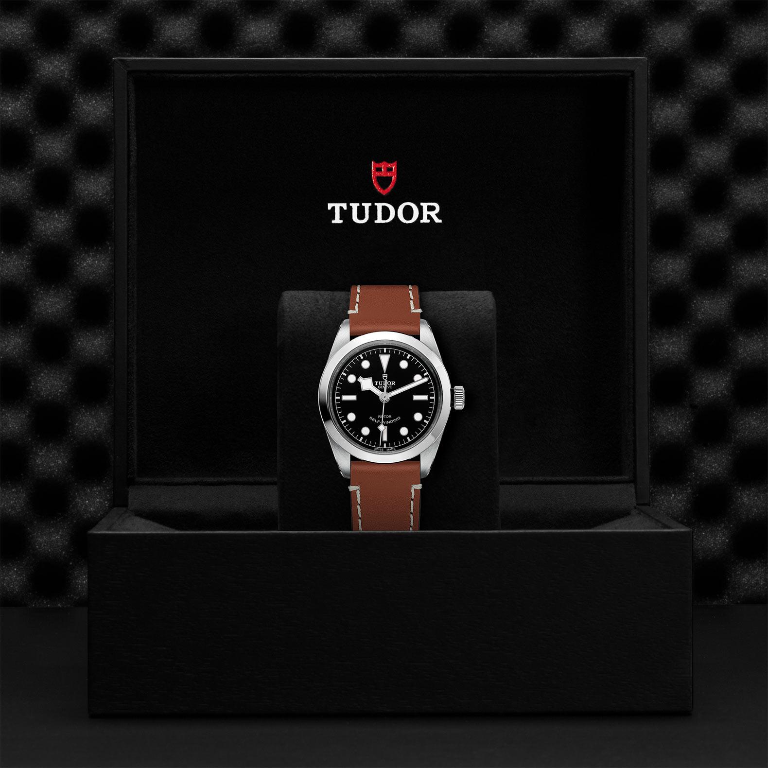 TUDOR Black Bay 36 M79500 0009 Presentation