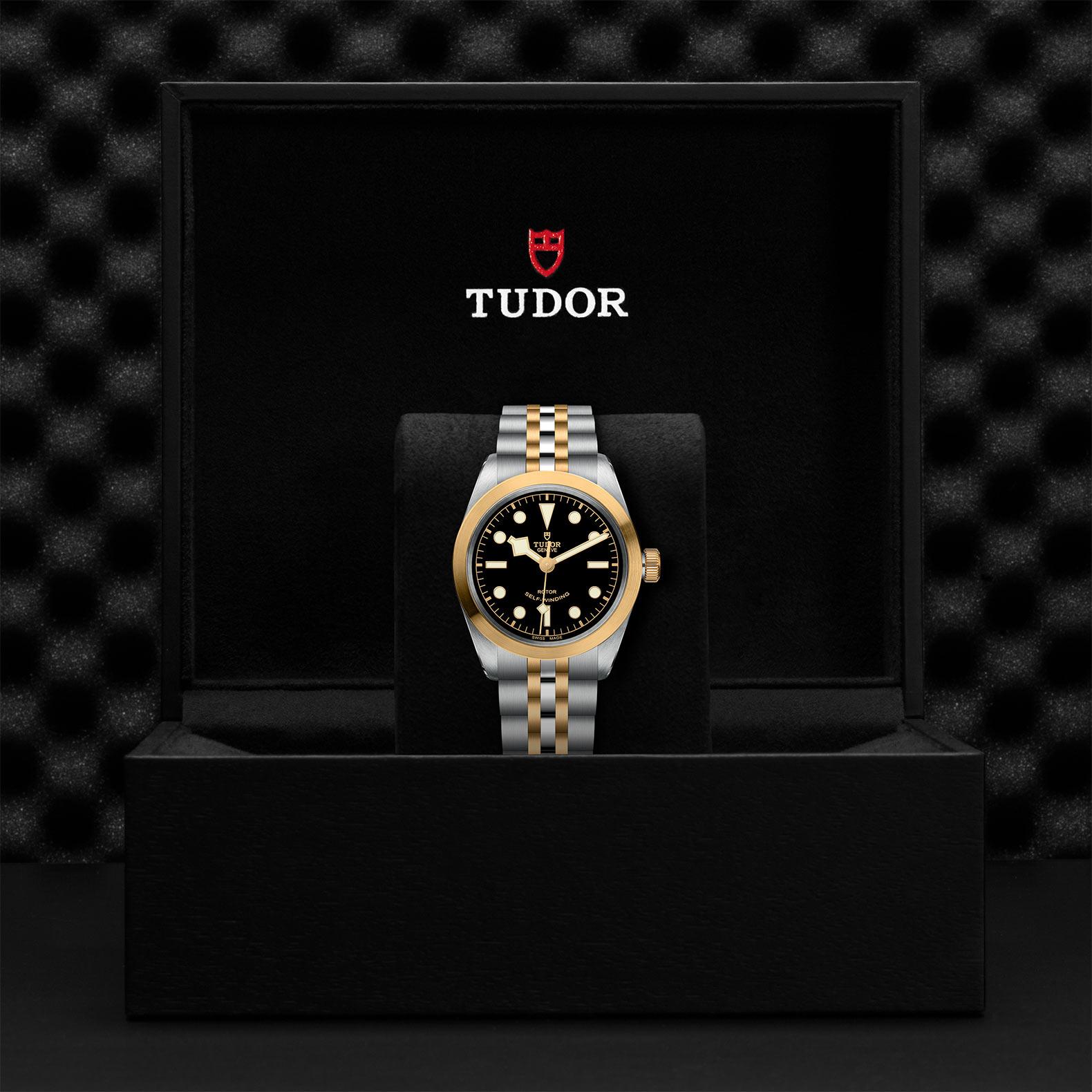 TUDOR Black Bay 36 SG M79503 0001 Presentation
