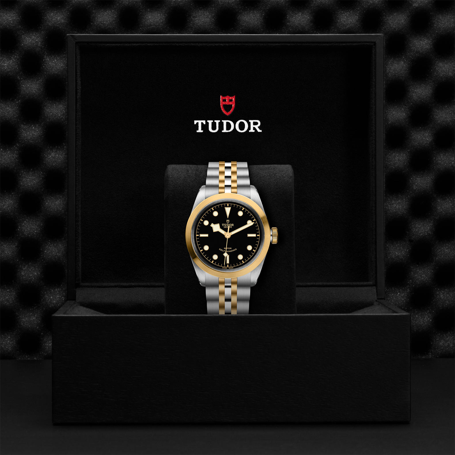 TUDOR Black Bay 41 SG M79543 0001 Presentation