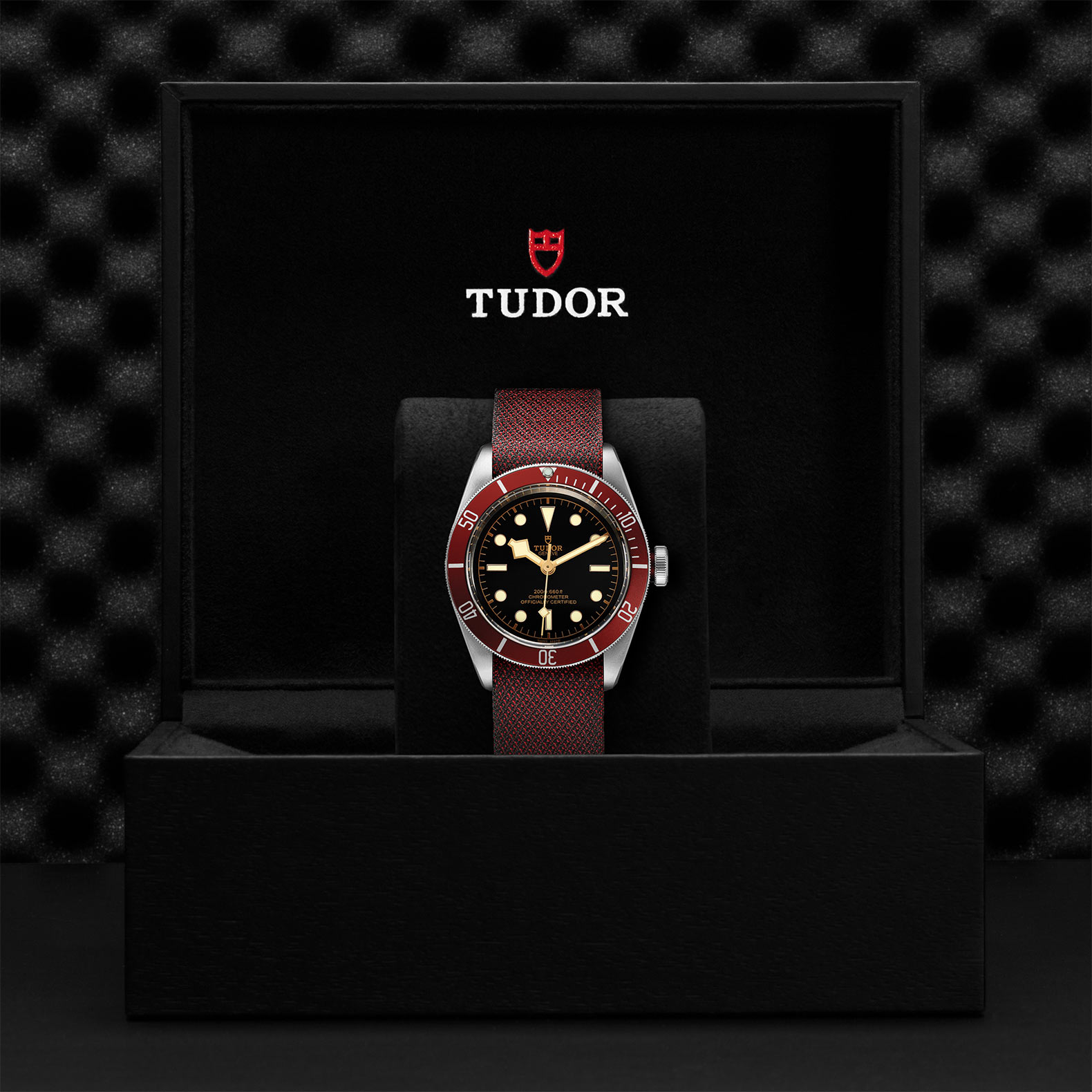 TUDOR Black Bay M79230R 0009 Presentation