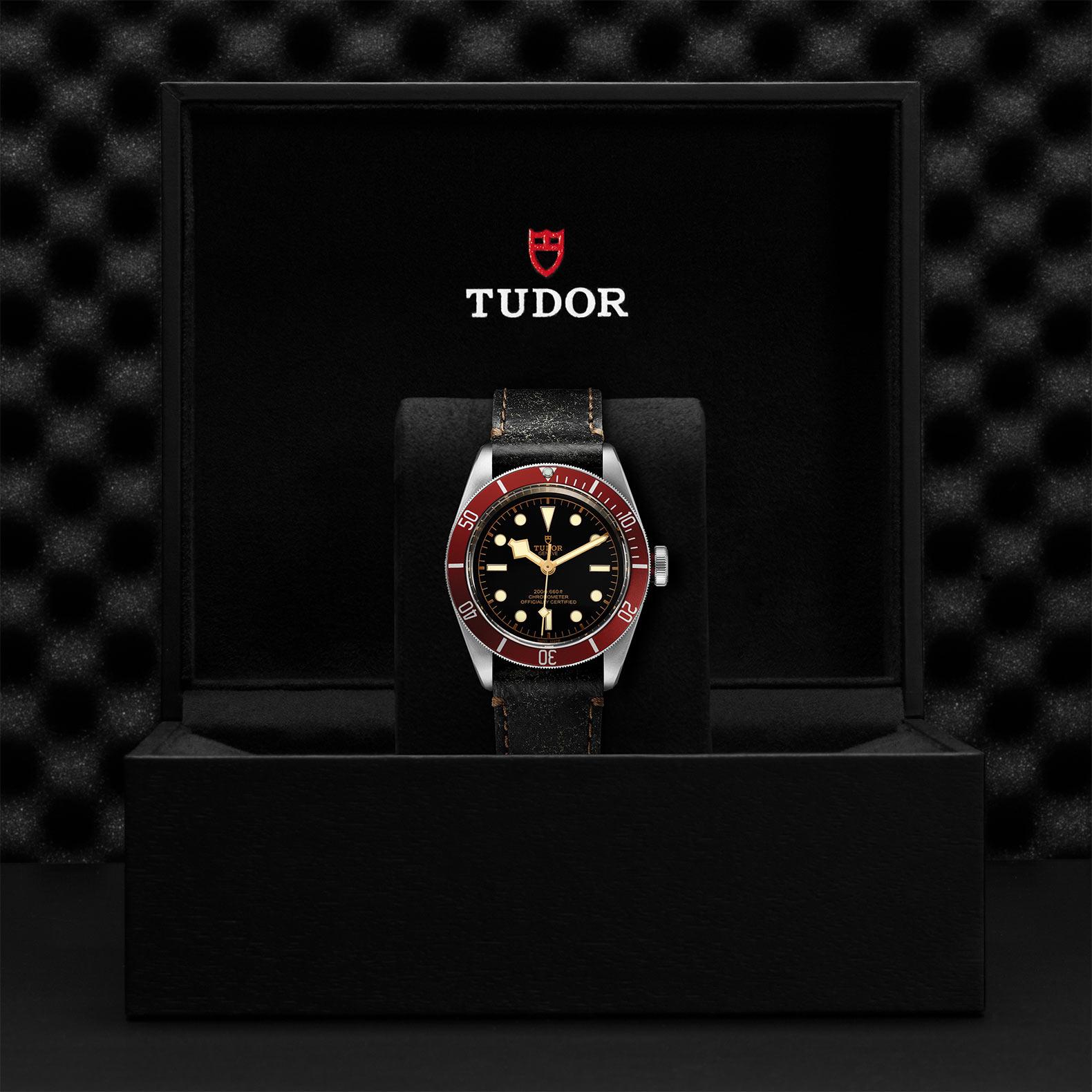 TUDOR Black Bay M79230R 0011 Presentation
