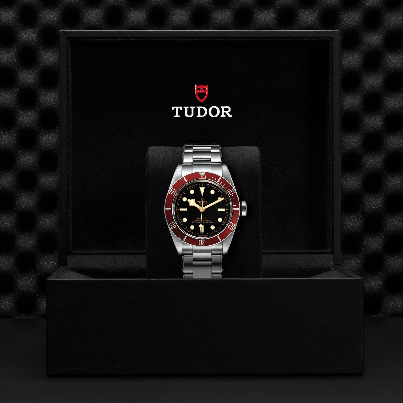 TUDOR Black Bay M79230R 0012 Presentation