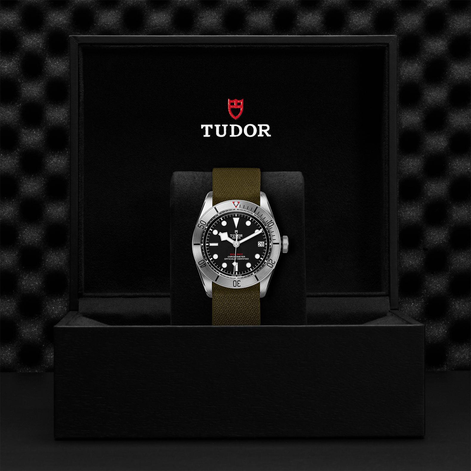 TUDOR Black Bay Steel M79730 0004 Presentation