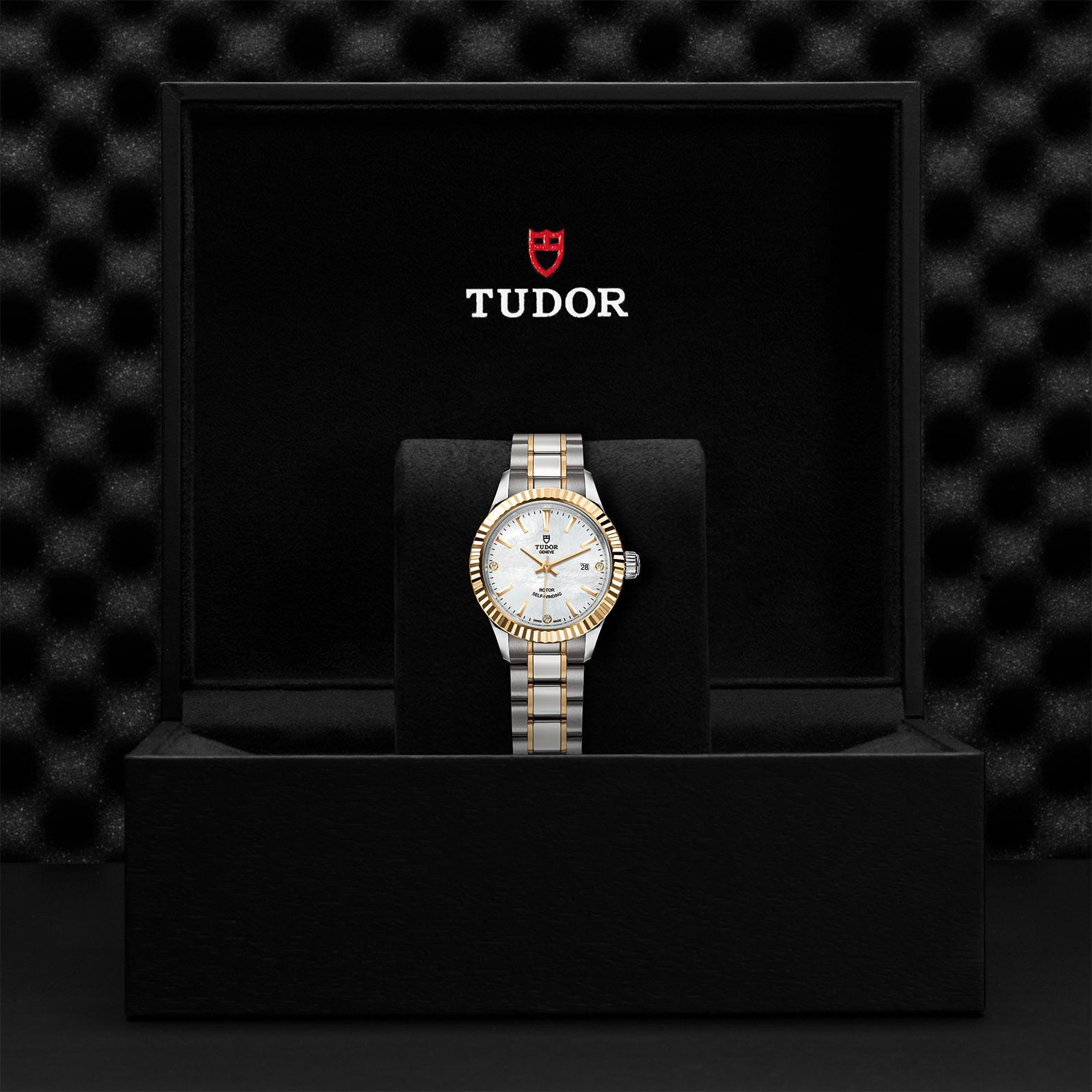 TUDOR Style M12113 0017 Presentation