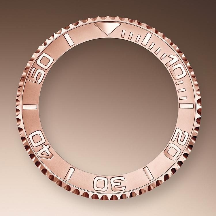 bidirectional rotatable bezel oystersteel and everose gold 50661