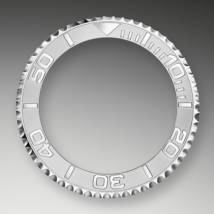 bidirectional rotatable bezel oystersteel and platinum 50662
