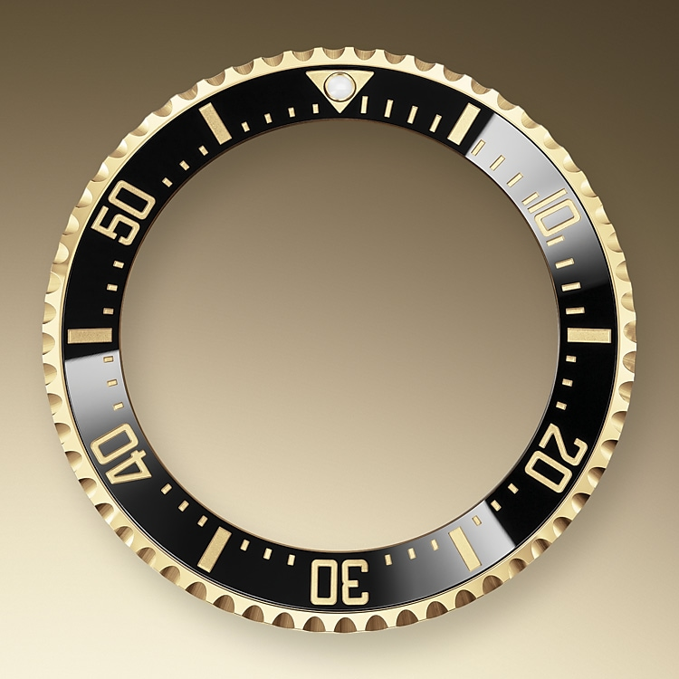 ceramic bezel and luminescent display oystersteel and yellow gold 51719