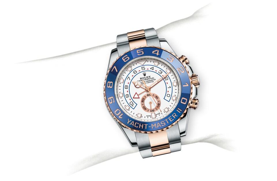 m116681 0002 modelpage on wrist landscape