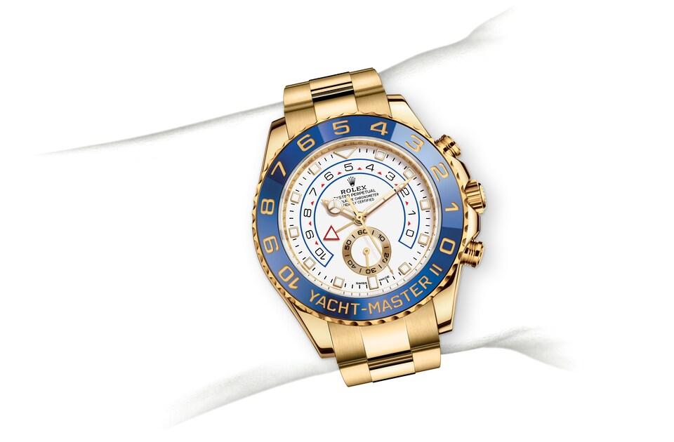 m116688 0002 modelpage on wrist landscape