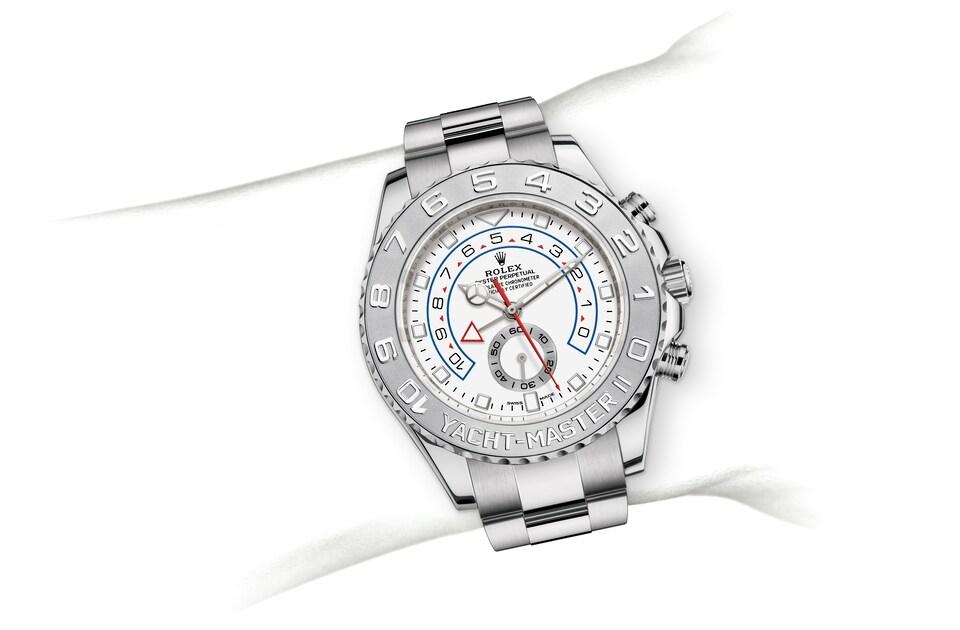 m116689 0002 modelpage on wrist landscape