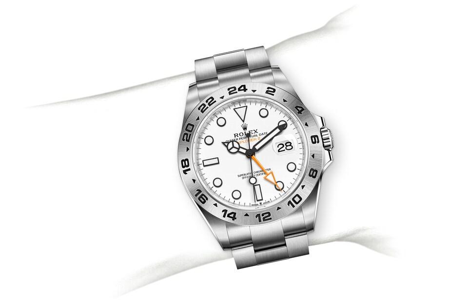 m226570 0001 modelpage on wrist landscape