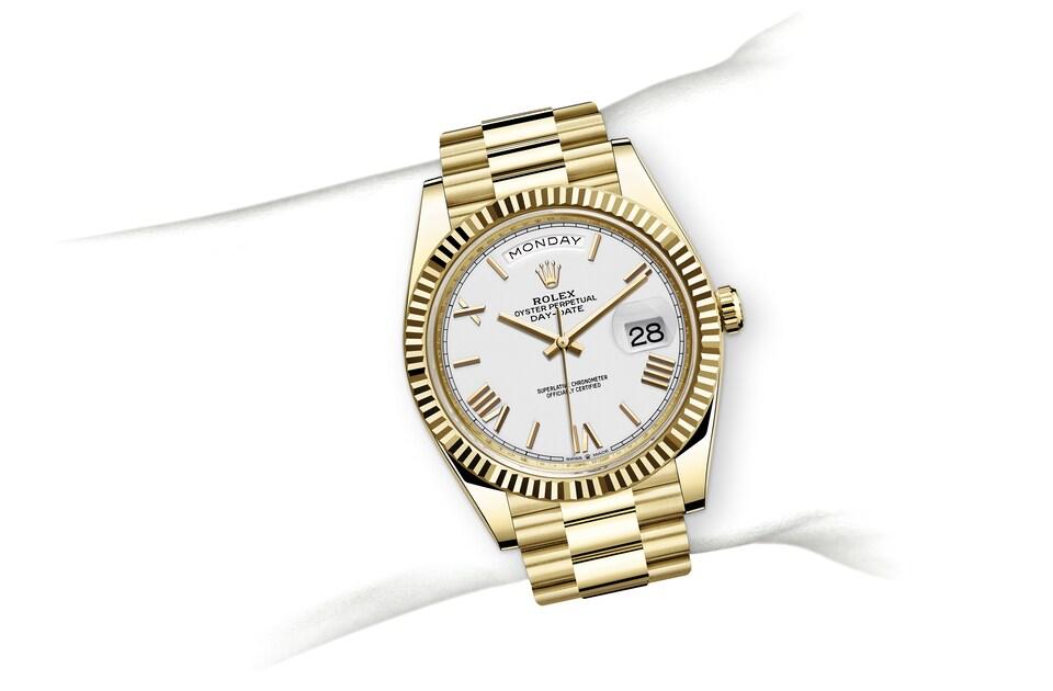 m228238 0042 modelpage on wrist landscape