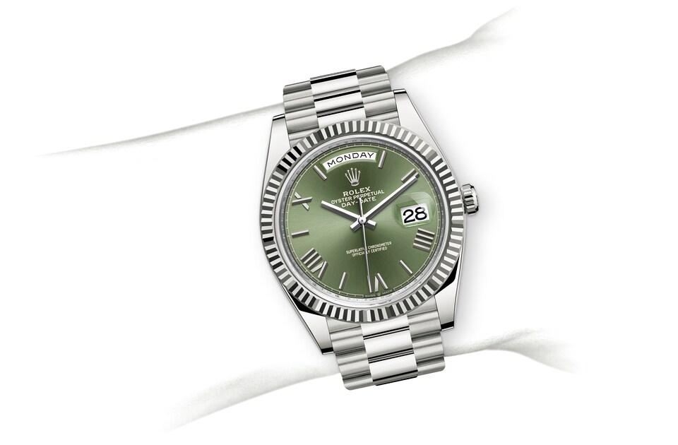 m228239 0033 modelpage on wrist landscape