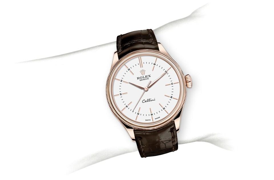 m50505 0020 modelpage on wrist landscape