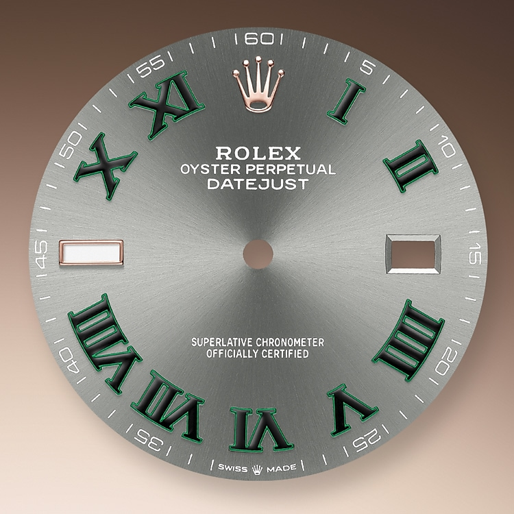 slate dial oystersteel and everose gold 51631 g 41
