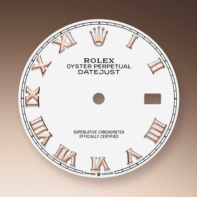 white dial oystersteel and everose gold 50810 g 36